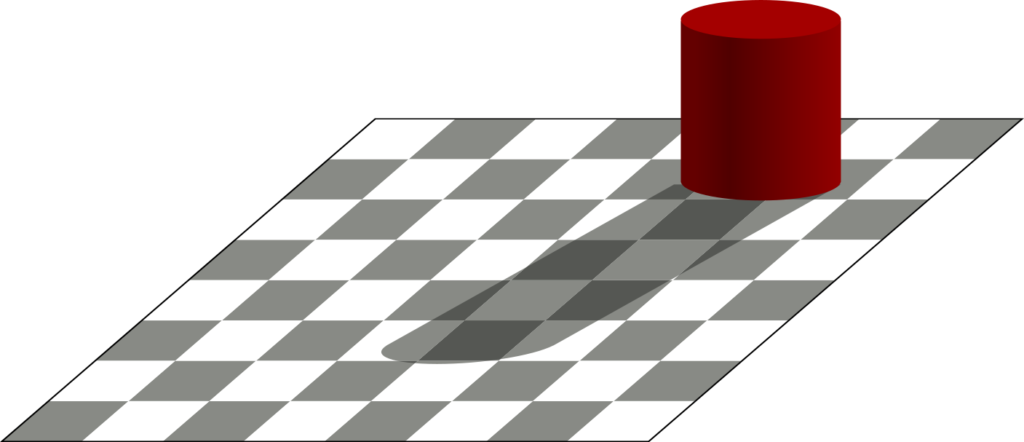 """illusion"" in which an object casts a shadow on a chess board. The light squares in shadow are the exact same color as the dark squares not in shadow, but are perceived differently."